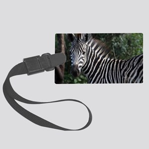 young zebra note Large Luggage Tag
