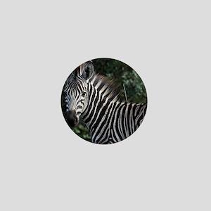 young zebra note Mini Button