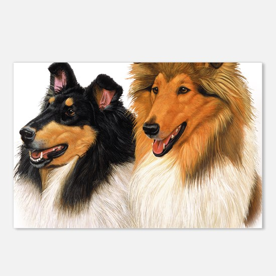 Double Rough Collie Postcards (Package of 8)