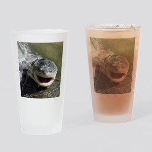 Smiling turtle Drinking Glass
