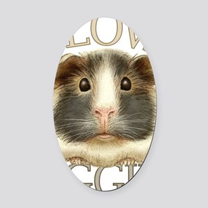 guineadraw Oval Car Magnet
