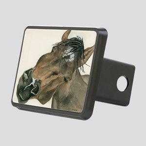 Twisted Wizard Rectangular Hitch Cover