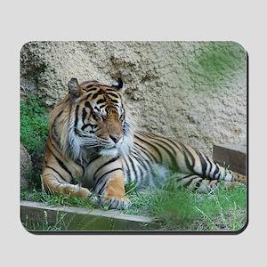 Sleeping Tiger Mousepad