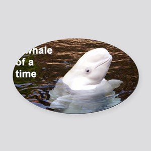 Whale card Oval Car Magnet