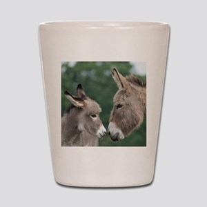 Donkey clock Shot Glass