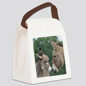 Donkey clock Canvas Lunch Bag