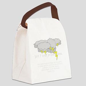 PraiseStormDK Canvas Lunch Bag