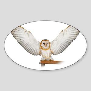 4D5Q2285_Great_Wings_Tspt_Garment Sticker (Oval)
