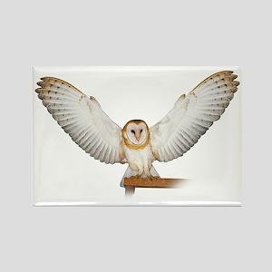 4D5Q2285_Great_Wings_Tspt_Garment Rectangle Magnet