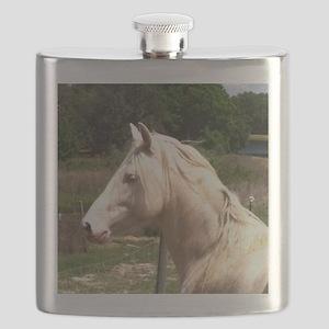 rayturnapr2crop Flask