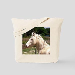 rayturnapr2crop Tote Bag