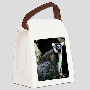 A portrait of a Ringtail Lemur Canvas Lunch Bag