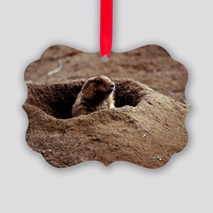 A Black-Tailed Prairie Dog puking Picture Ornament