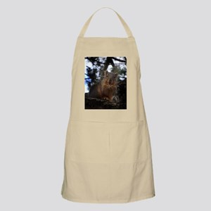 Fox squirrel smiling Apron