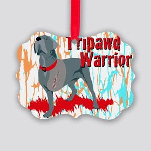 Tripawd Warrior 4x6 Card Picture Ornament