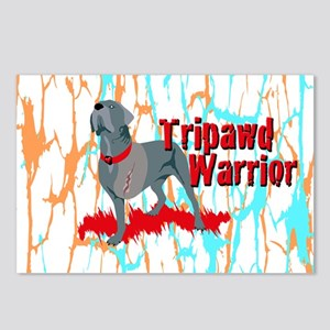 Tripawd Warrior 3x5 Stick Postcards (Package of 8)