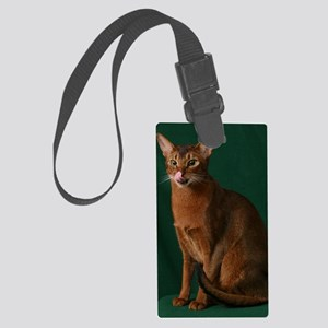 JakeLick Large Luggage Tag