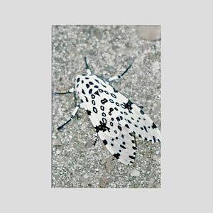 iphone 4 slider case moth Rectangle Magnet
