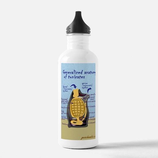 Tunicate Water Bottle
