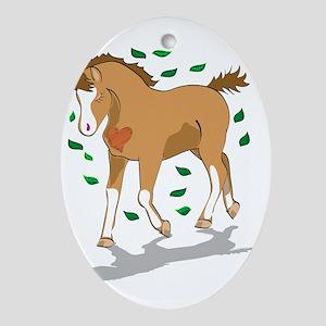 welsh mountain foal Oval Ornament