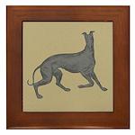 Greyhound Frolic Tan Framed Tile