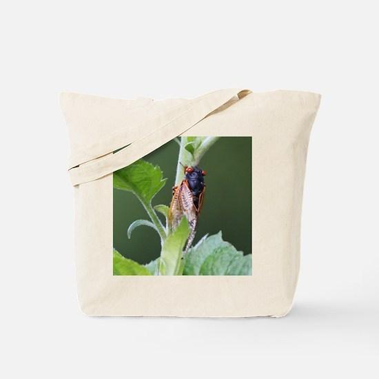Thirteen Year Cicada Tile Tote Bag