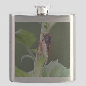 Thirteen Year Cicada Tile Flask