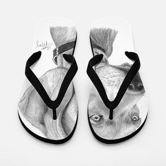 Weimaraner3 Flip Flops