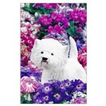 West Highland White Terrier Large Poster