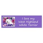 West Highland White Terrier Sticker (Bumper 50 pk)