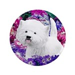 West Highland White Terrier 3.5