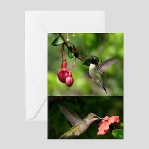 HMa2.41x4.42(447) Greeting Card