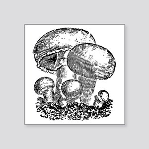 "mushrooms Square Sticker 3"" x 3"""