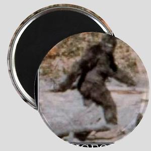 bigfoot-big-foot-hide-and-seek-demotivation Magnet