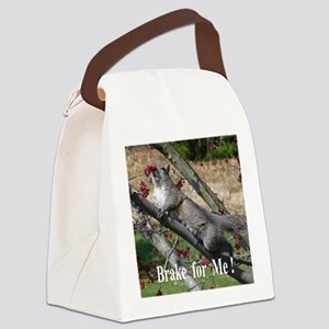 Sq1010 Canvas Lunch Bag
