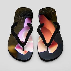 DSCF4579 Flip Flops