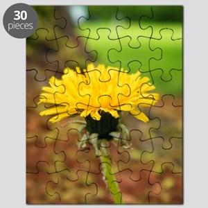 218230_225657577448627_160839957263723_1079 Puzzle