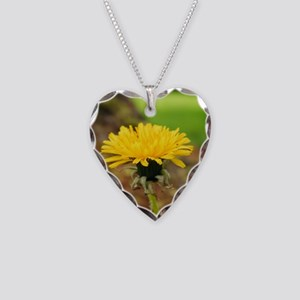 218230_225657577448627_160839 Necklace Heart Charm