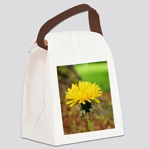 218230_225657577448627_1608399572 Canvas Lunch Bag