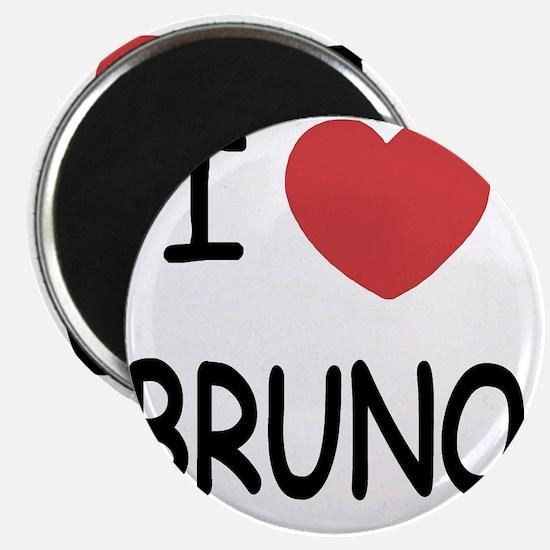BRUNO Magnet
