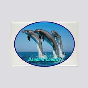dauphin_country_transparent Rectangle Magnet