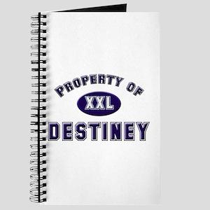 Property of destiney Journal