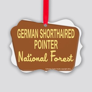 gspnationalforest Picture Ornament