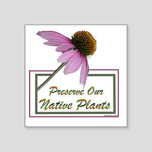 """Native Plants Square Sticker 3"""" x 3"""""""
