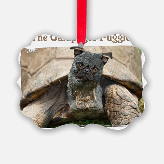 20060903_14434579_001 Ornament