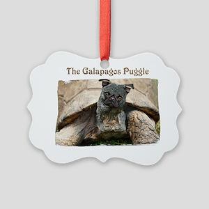 20060903_14434579_001 Picture Ornament