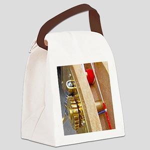 Bass_11x14_p3999 Canvas Lunch Bag