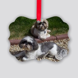 Puppies_outside Picture Ornament