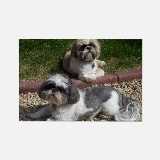 Puppies_outside Rectangle Magnet