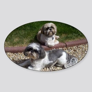 Puppies_outside Sticker (Oval)